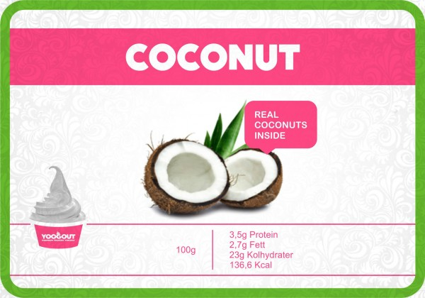 yoogout-malmo-frozen-yogurt-coconut